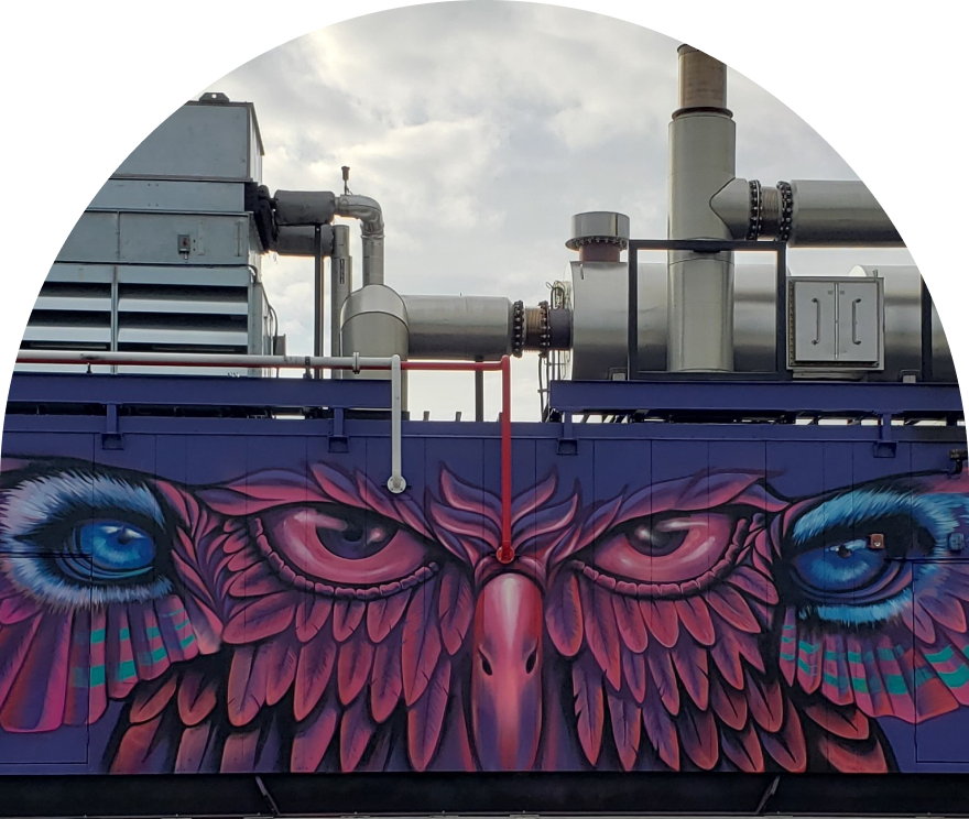 Bird Graffiti